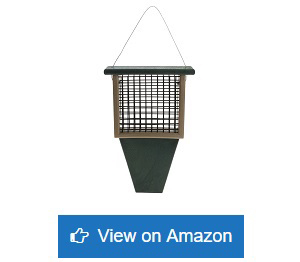 Rubicon-Suet-Feeder-With-Tail-Prop-Hunter-Green