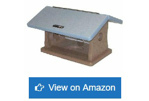 Bird-Choice-Bluebird-Mealworm-Feeder