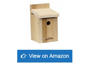 Kettle-Moraine-Cedar-Post-Mount-Bluebird-Mealworm-Feeder