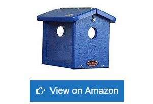 Kettle-Moraine-Recycled-Bluebird-Mealworm-Feeder