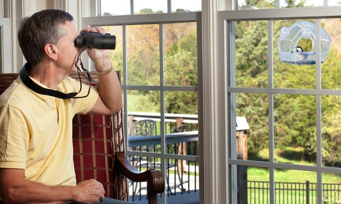 window-mounted-bird-feeder
